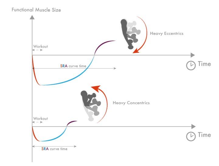 Excentrisch en concentrisch supercompensatie