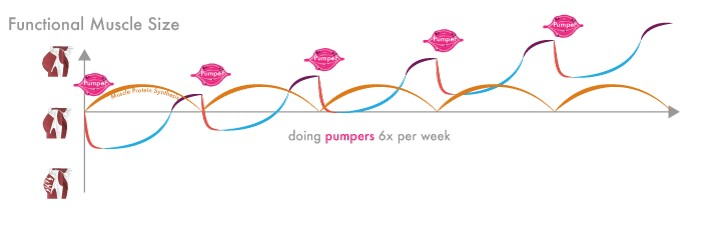 Pomp oefeningen 6 keer per week