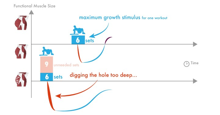 maximale groeiprikkel